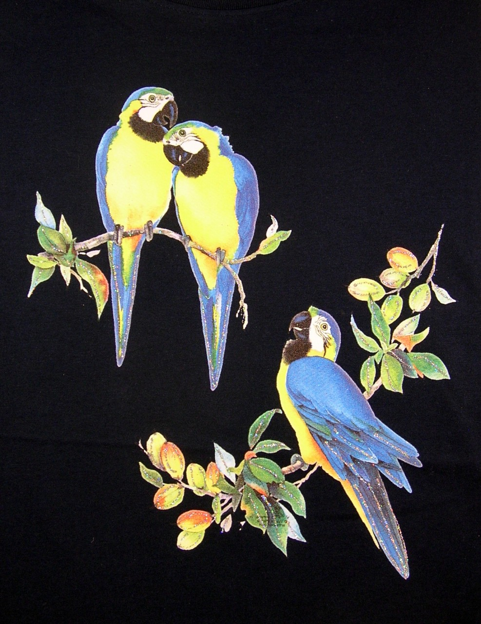 Blue and Gold Macaws T-Shirt - Ladies