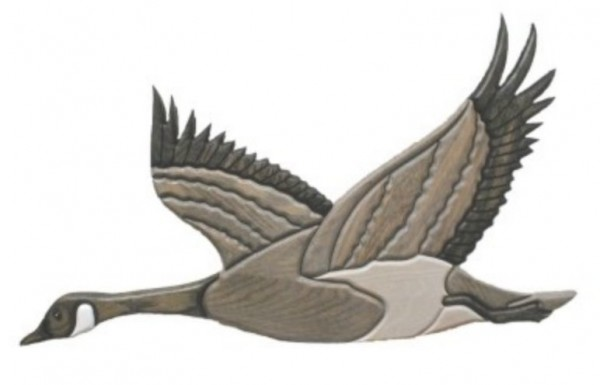 Canada Goose Oak Wall Plaque - Wings Up