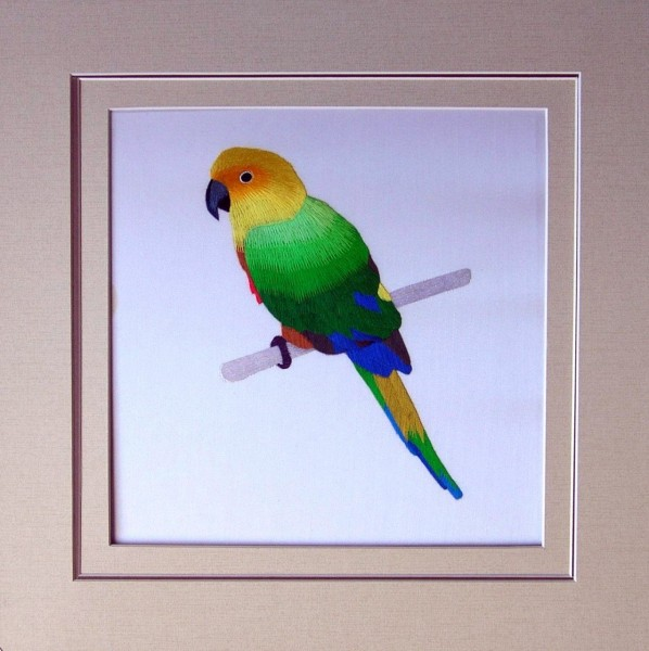 Jenday Conure Embroidered Silk Art
