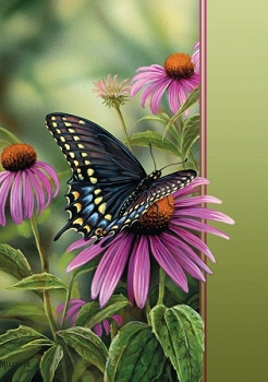 A Moment's Rest Butterfly Blank Greeting Card