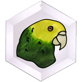 Amazon Parrot Suncatcher
