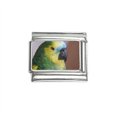 Blue Fronted Amazon Parrot Italian Charm