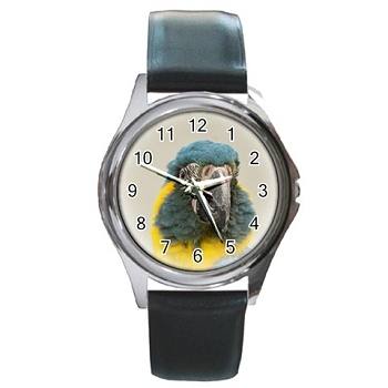 Blue-Throated Macaw Silver Watch