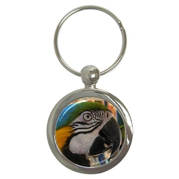 Blue and Gold Macaw Key Chain