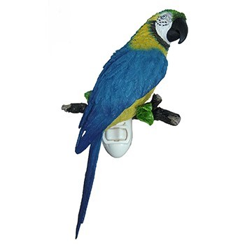 Blue and Gold Macaw Nightlight