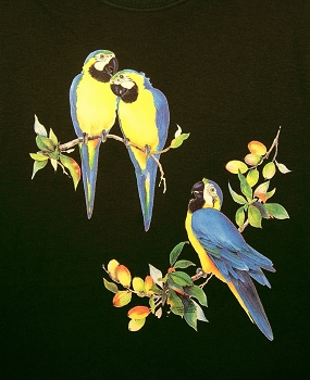 Blue and Gold Macaws T-Shirt