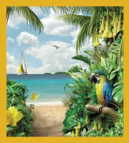Blue and Gold Macaw on the Beach Magnet
