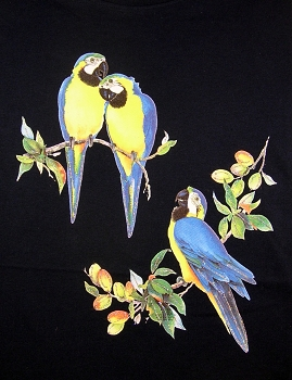 Blue and Gold Macaws Ladies T-Shirt