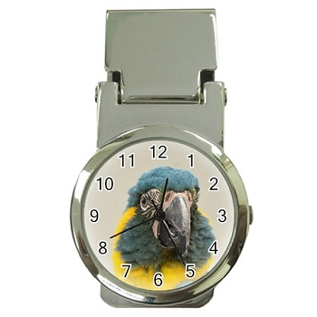 Blue-Throated Macaw Money Clip Watch