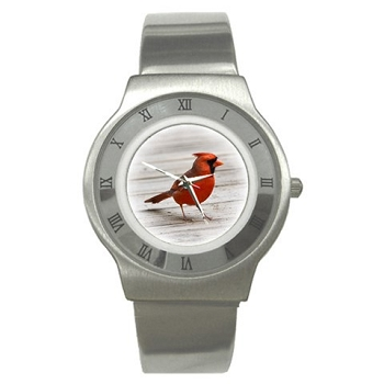 Cardinal Stainless Steel Watch