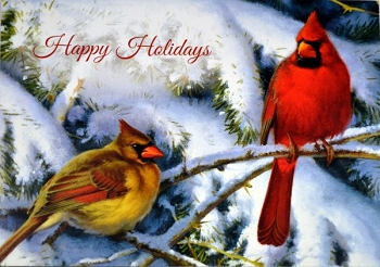 Cardinals in the Snow Christmas Card