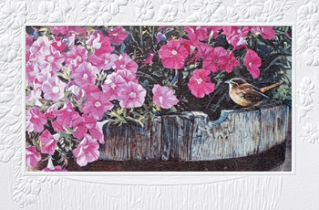 Carolina Wren Friendship Card