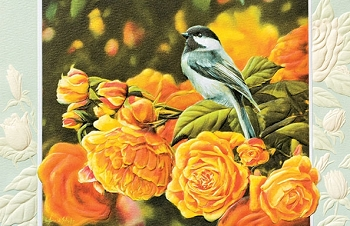 Chickadee Sympathy Card