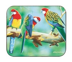 Rosella Coaster Set