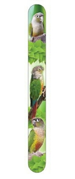 Green Cheek Conures Nail File