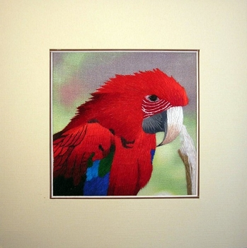 Green-Wing Macaw Embroidered Silk Art