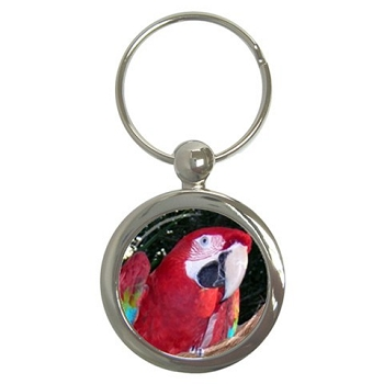 Green-wing Macaw Key Chain