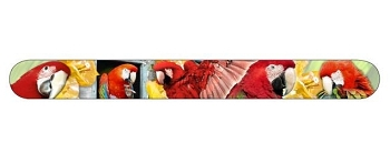 Greenwing Macaws Nail File