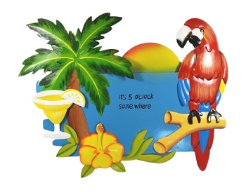 It's 5 O'Clock Somewhere Macaw Wall Plaque