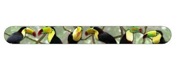 Keel Billed Toucans Nail File