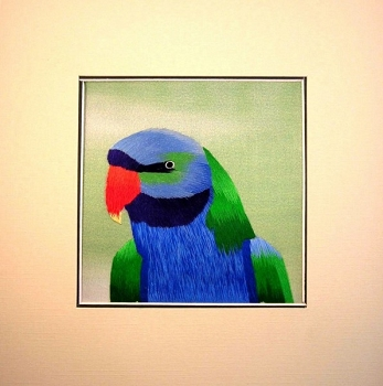 Moustached Parakeet Embroidered Silk Art
