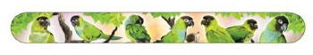 Nanday Conures Nail File
