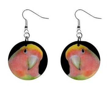 Pied Yellow Lovebird Button Earrings