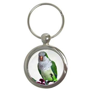 Quaker Parrot Key Chain