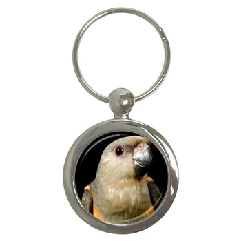 Red Bellied Parrot Key Chain