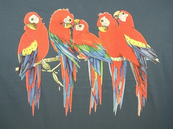 Red Macaws Ladies T-Shirt