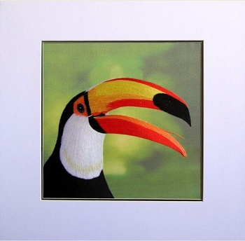 Toco Toucan Embroidered Silk Art