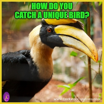 Unique Bird Joke