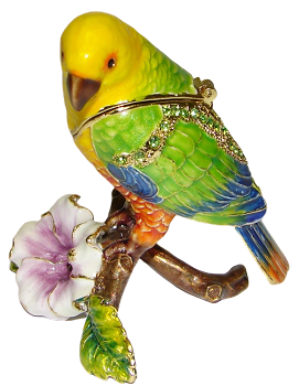 Amazon Parrot Trinket Box