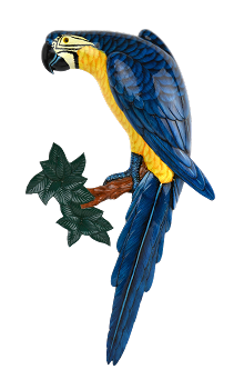 Blue and Gold Macaw Wall Plaque