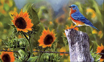 Bluebird Sunflower Door Mat