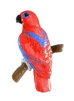 Eclectus Female Pin