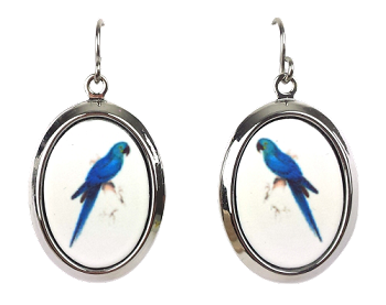 Hyacinth Macaw Earrings - Silver