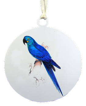 Hyacinth Macaw Ornament