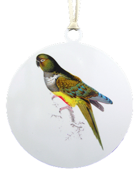 Patagonian Conure Ornament