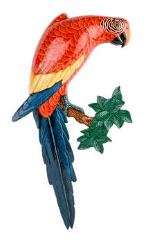 Scarlet Macaw Wall Plaque