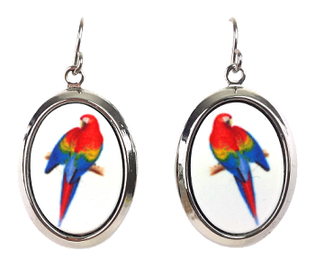 Scarlet Macaw Earrings - Silver