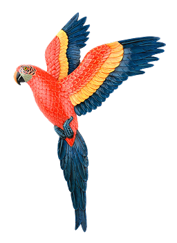 Flying Scarlet Macaw Wall Plaque