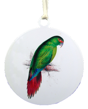 Slender-Billed Conure Ornament
