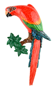 Green Wing Macaw Wall Plaque