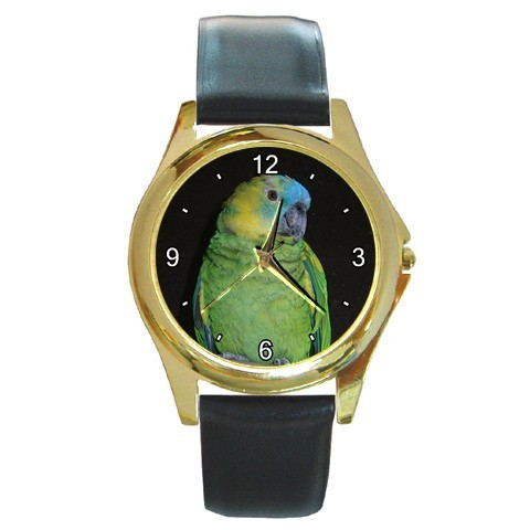 Blue Fronted Amazon Watch