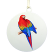 Scarlet Macaw Ornament